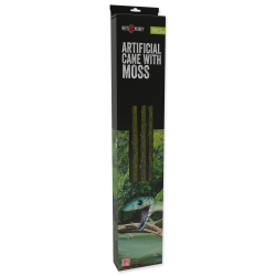 """""""Artificial cane with moss..."""