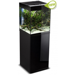Cabinet Glossy Cube...